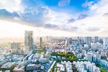 Tuinposter Tokio 東京の幻想的な青空都会