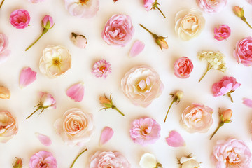 Summer blossoming delicate rose blooming flowers festive background, pastel and soft bouquet floral card, selective focus, toned Wall mural