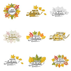 collection of hello autumn lettering pattern with woody leaves isolated on white background