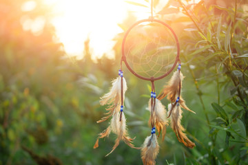 Dreamcatcher sunset, on a green tree, boho chic, ethnic amulet, symbol, with space, usa indian symbol