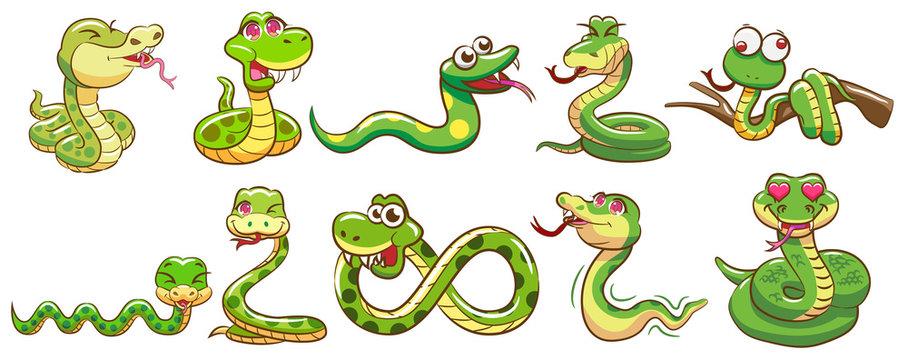 snake vector set graphic clipart design
