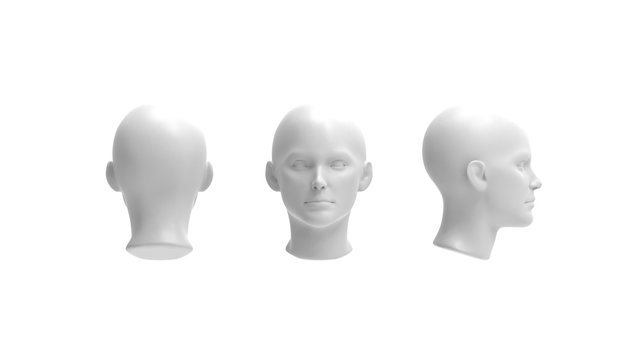 3d rendering of a human model isolated in white background