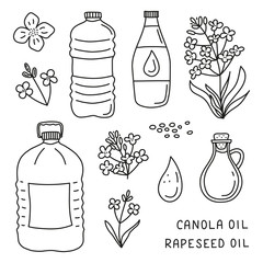 Set of doodle canola oil and flowers.