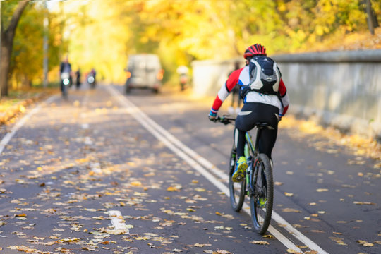 Unrecognizable guy, back to us riding bike in autumn park, bright colorful trees, sunny day, fall foliage. Healthy lifestyle, leisure activity