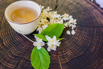 Cup of green tea, dried  blossoms and sprig of jasmine on wooden board