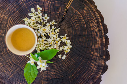 Cup of green tea, dried  blossoms and sprig of jasmine on wooden board. Flat lay with copyspace