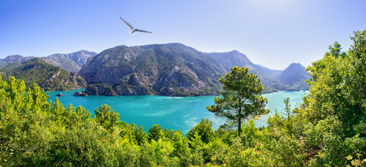 Green canyon. Reservoir Oymapinar on the river Manavgat