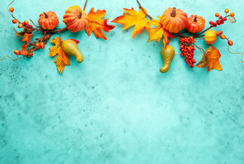 Autumn concept with pumpkins, flowers, autumn leaves and rowan berries on a turquoise background. Festive autumn decor, flat lay with copy space.