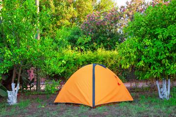 Orange tent among orange camping trees