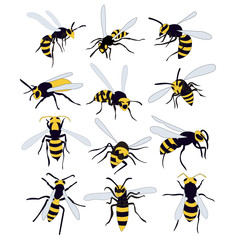 vector, isolated, bees, wasp, set
