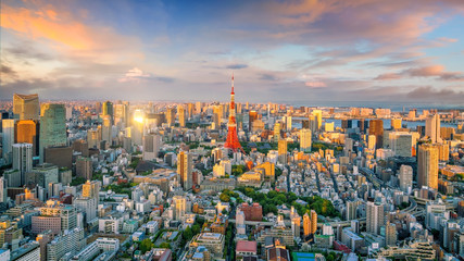 Wall Mural - Panorama view of Tokyo city skyline and Tokyo Tower building in Japan