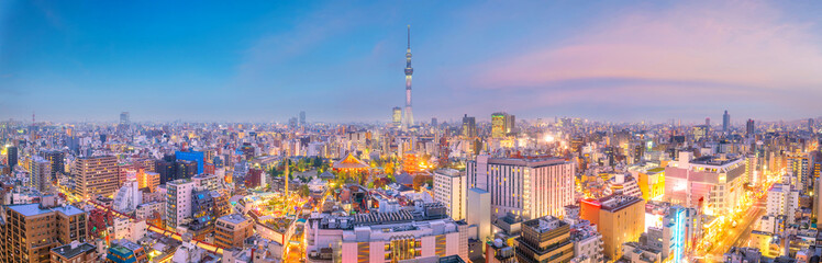 Wall Mural - View of Tokyo skyline at sunset