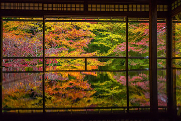 View of the autumn colors from the old temples in Kyoto