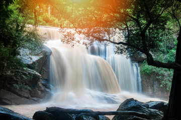 Waterfall landscape beautiful with sunlight rays in the river stream on the mountain with tree and...