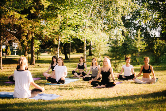 Group of young women are meditating in park on summer sunny morning under guidance of instructor. Group of girl outdoors are sitting in lotus pose on yoga mats on green grass with eyes closed