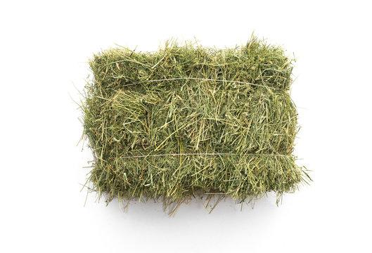 Studio shot of straw hay on a white background.