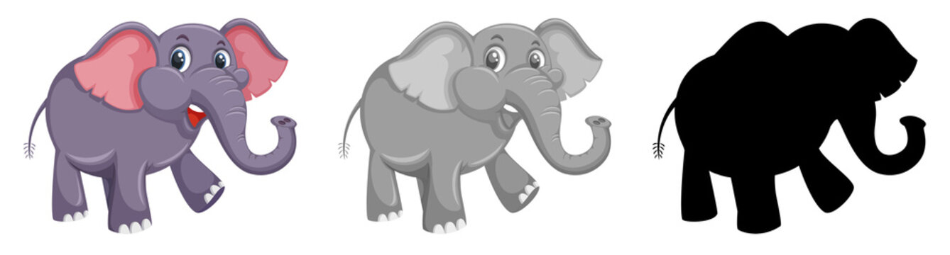 Set of colored and silhouette elephant