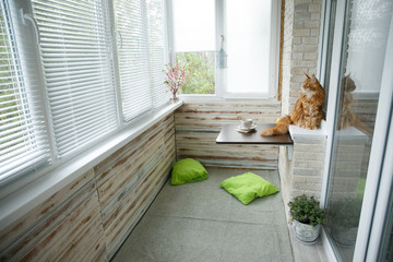 interior of the apartment to the balcony-style loft with panoramic views. Maine coon cat sits on a table