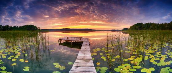 Photo sur Plexiglas Nénuphars Beautiful summer sunrise over lake - Panorama