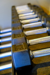 Dumbbells in Weight Rack in a Fitness Center