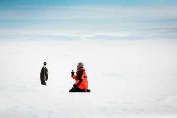 Man taking picture of Emperor Penguin in snowy landscape