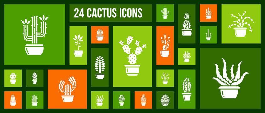 Cactus succulent plant in pot icon vector set
