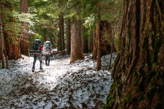 Two people approach Mount Rainier on a forest trail, Mount Rainier National Park, Washington, USA