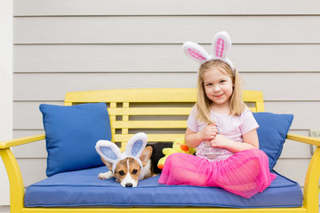 Cute little blond girl sitting with corgi puppy both with bunny ears