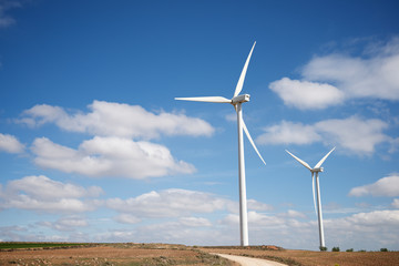 Windmills for renewable electric production in Zaragoza Province, Spain. Wall mural