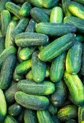 Cucumbers at farmers market