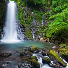 深緑の滝_白糸の滝