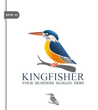 Kingfisher Logo Photos Royalty Free Images Graphics Vectors Videos Adobe Stock