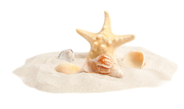 Pile of beach sand with beautiful starfish and sea shells on white background