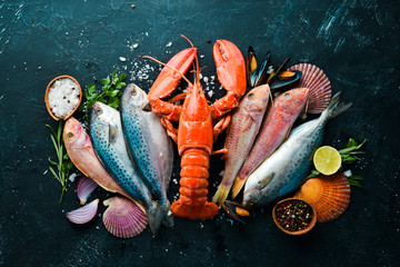 Seafood on stone background. Lobster, fish, shellfish. Top view. Free copy space.