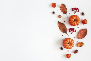 Autumn composition. Dried leaves, pumpkins, flowers, rowan berries on white background. Autumn, fall, halloween, thanksgiving day concept. Flat lay, top view, copy space Wall mural