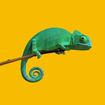 Chameleon on a stick. Low poly design. Vector, EPS 10