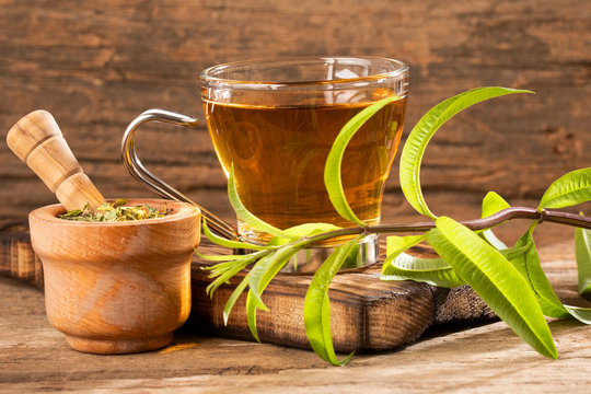Aloysia citrodora - Tea with lemon verbena