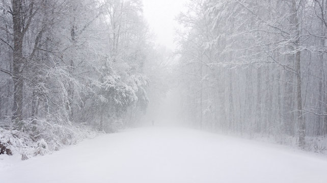 a hiker disappears into the snow near umstead state park north carolina during a bitter winter blizzard, january 2018