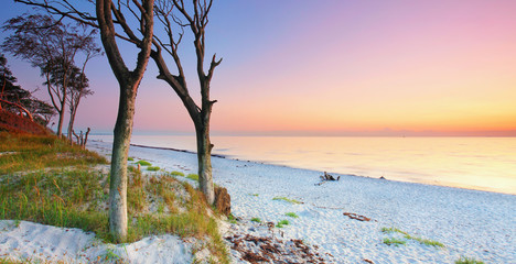 Wall Mural - Sonnenuntergang am Weststrand Darss Ostsee
