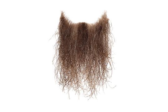 Disheveled brown beard isolated on white. Mens fashion