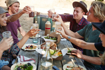 """Group of millennial friends having a picnic in the park together doing a """"""""toast""""""""."""