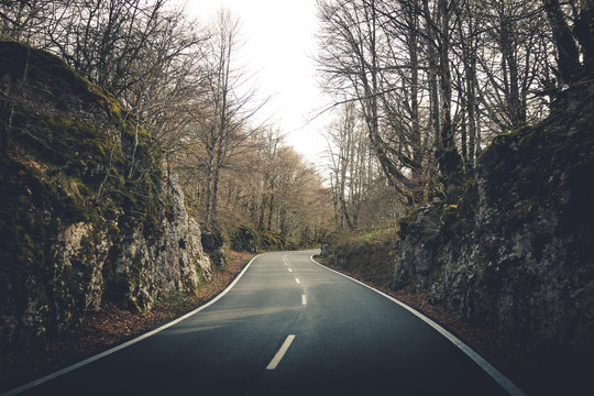 Empty winding asphalt road surrounded by low stony rocks with moss and dry bare trees