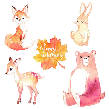 Lovely forest woodland animals set of watercolor illustrations