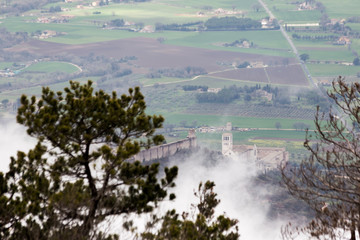 View from above of Umbria valley, with clouds below the viewer and trees in the foreground