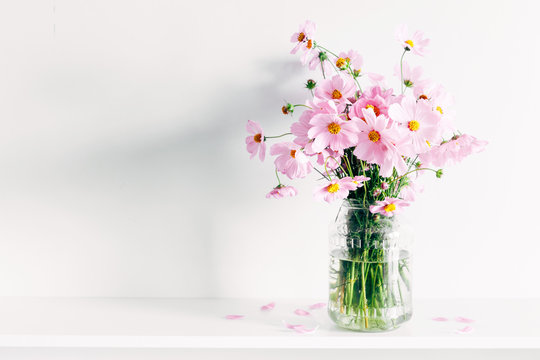 Fresh summer bouquet of pink cosmos flowers in glass vase on white wood shelf on white wall background. Floral home decor.