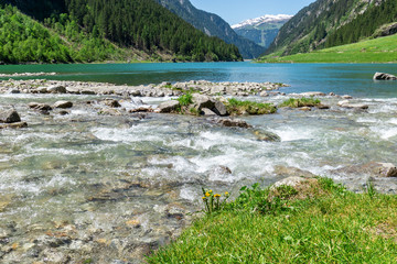 Fast water stream flow into mountain lake. Landscape with stones in brook surrounded by rich vegetation. Summer mountain landscape in the Alps, Austria, Tyrol.