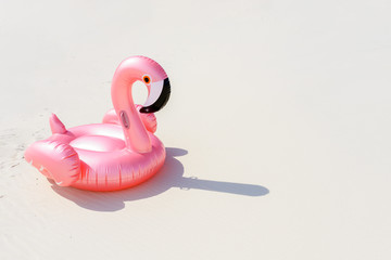 pink flamingo on a sandy beach