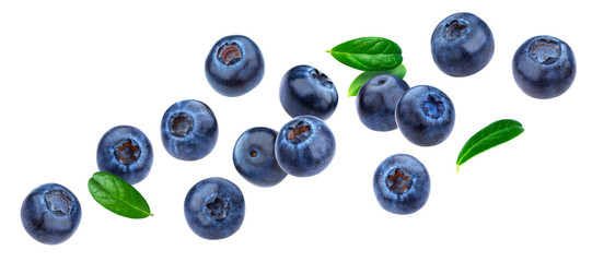 Blueberry isolated on white background with clipping path