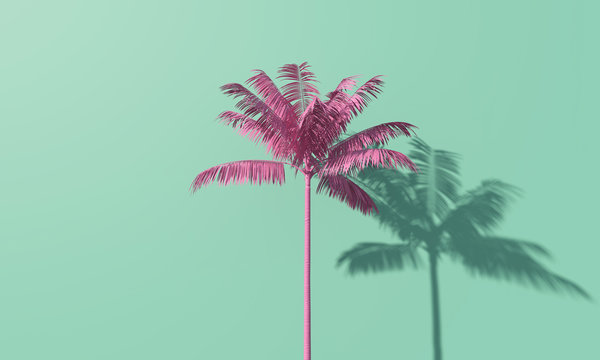 Bright summer colourful palm tree tropical background. 3D Rendering