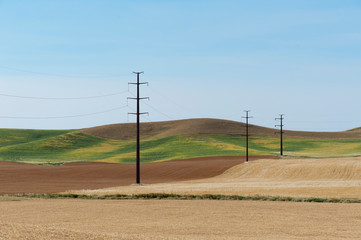 Selective focus of electric poles in rural area